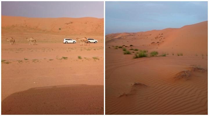 Wahiba Sands Dünen und Sonnenuntergang