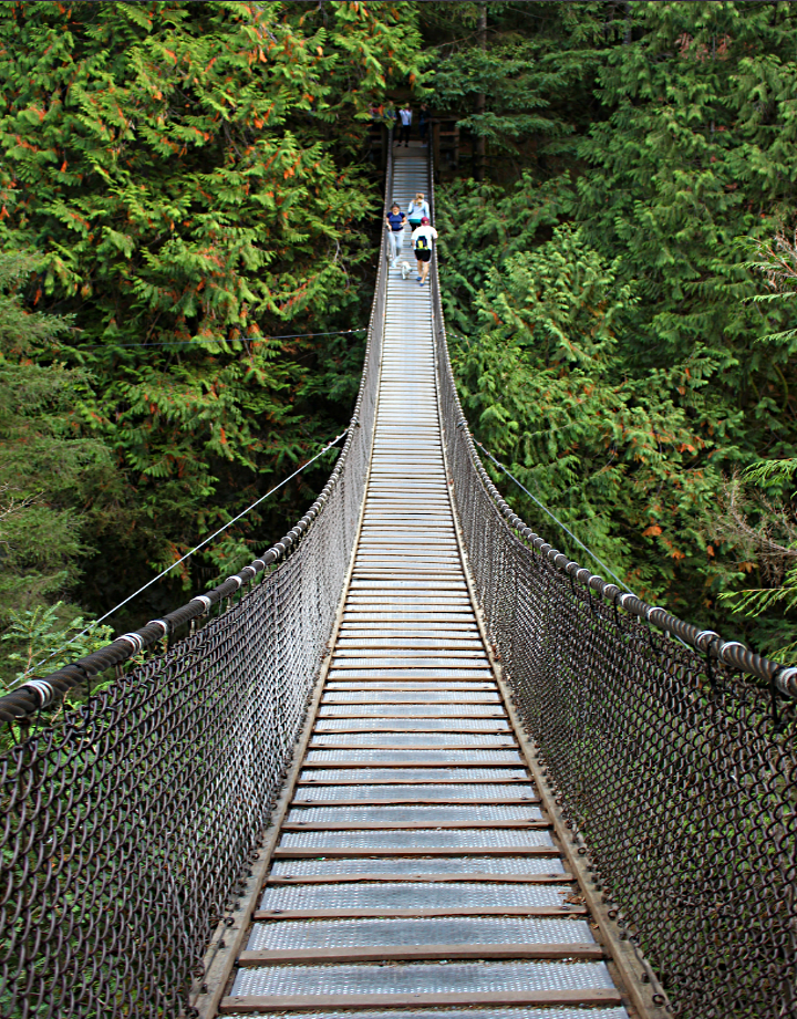 Hängebrücke im Lynn Canyon